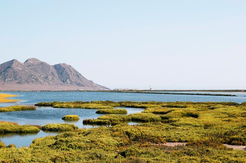 Miradores de Cabo de Gata - Salinas
