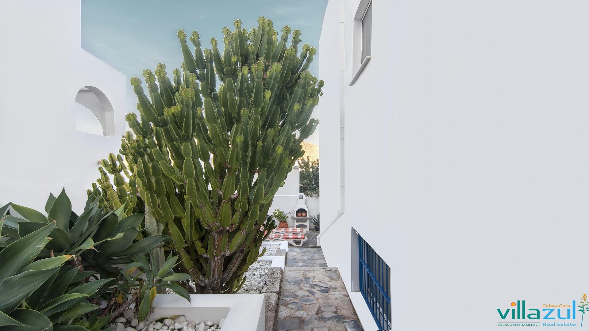 La primavera en Cabo de Gata llega a nuestros alojamientos | Exteriores Casa Playa del Arco
