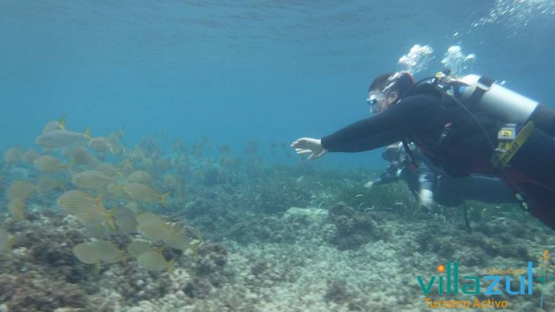 Bautismo de Buceo en Los Joses - Villazul Turismo Activo Cabo de Gata