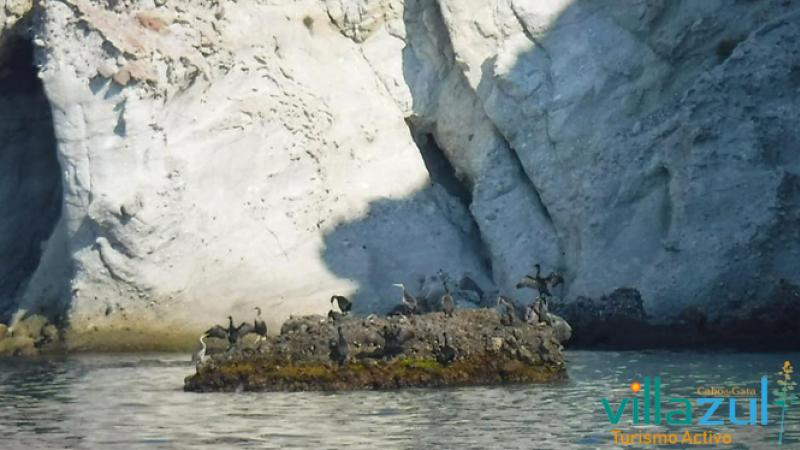 Rutas en Barco Isleta del Moro. Villazul Turismo Activo Cabo de Gata