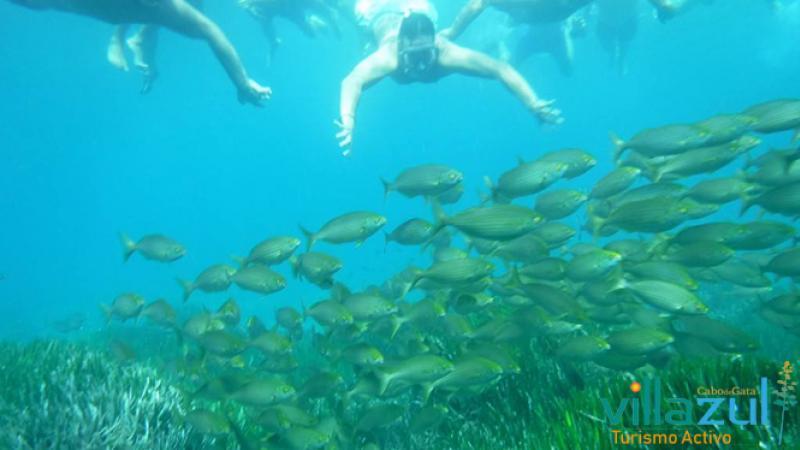 Ruta de Kayak en Arrecife de las Sirenas - La Fabriquilla Cabo de Gata