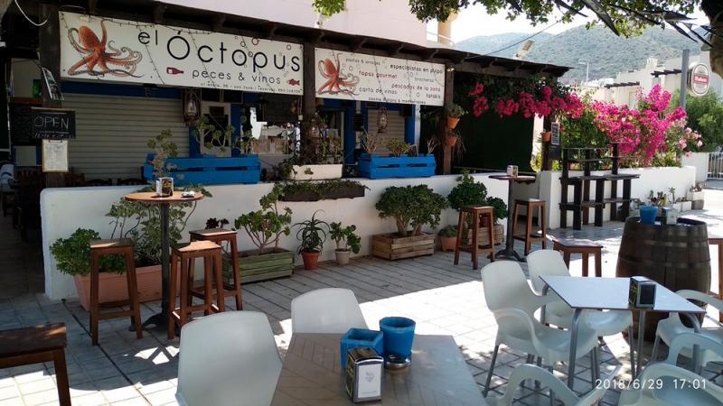 Restaurantes en San José - Octopus